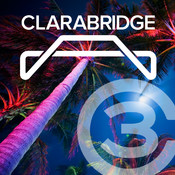 Clarabridge Customer Connections 2014