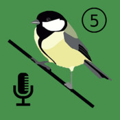 Bird Listener - Automatic Bird Counter By Songs and Calls
