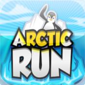 Arctic Run