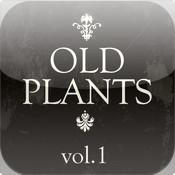 OLD PLANTS 1