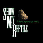 Show My Reptile