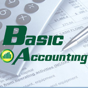 Basic Accounting light accounting
