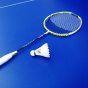 Badminton Video
