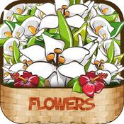Video Tutorial for Flower Handmade 2015 - Learning Flower Handmade Trainning Course Online
