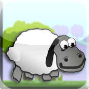 Count Sheeps