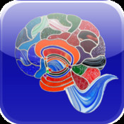 JBT BRAINS: What Color is Your Brain? brains