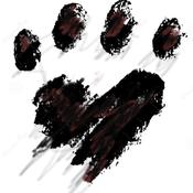 Malattie dei cani