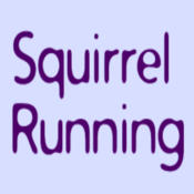 Squirrel Running Game