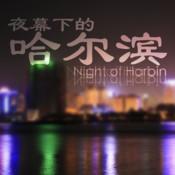 夜幕下的哈尔滨 王刚成名作