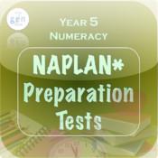Naplan Y5 Numeracy