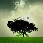 Mindfulness for Beginners — Jon Kabat-Zinn