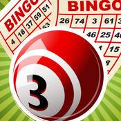 Bingo Pro - From Casino Blitz To Heaven