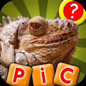 What is the Word? - Guess the Pics and Words In This New Photo Puzzle Quiz Game!