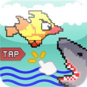 Shark Bird Attack