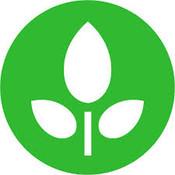 Plant Based Eating