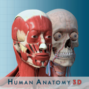 Anatomy and Physiology 3D Free : Anatomical Model of the Human Body