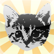 KittenApp free kittens in minnesota