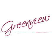 Greenview Accounting Group income tax
