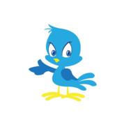 Fast Twitter Followers