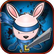 Mutant Ninja Bunny Hero- Kung Fu Air Fighting Jack Rabbit Pro