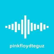 Radionomy App for pinkfloydteguz
