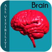 All Visibiliti Brain