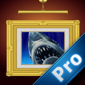 Attack Shark Pro : Shoots And Wins