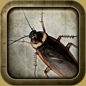 Roach Madness