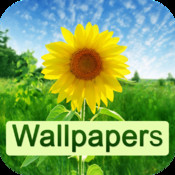 Wallpapers HD - free 100,000+ wallpapers