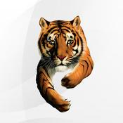 Tiger EUS