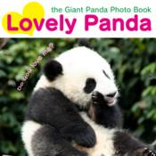 Lovely Panda photo