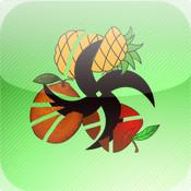 Fruits Smasher By Elephant Ninja fruit ninja lite