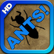 ANTS! HD red ants
