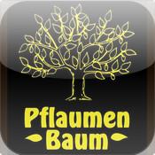 Pflaumenbaum KL