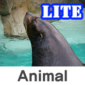 Baby Word Animal free