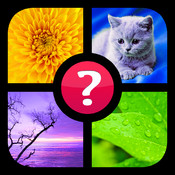 Guess the Word! ~ Free Photo Quiz