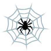Spider ◇