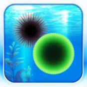 Amazing Aquarium moss