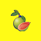 Fruit Counter