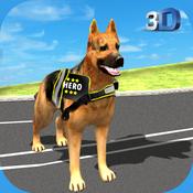 City Hero Dog Rescue