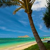 Hawaii Beaches Video