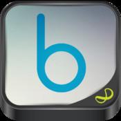 Bicknell Business Advisers Ltd