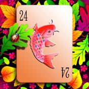 Card24 HD cards