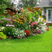 A Garden Life HD