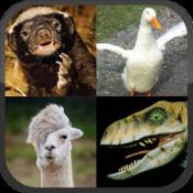Llama or Duck or Honey Badger or Raptor?