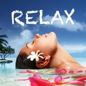 Zen Music - Best Daily Relaxing Meditation & Yoga HD Videos