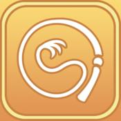 Whip it - Pocket Whip Sounds Pro
