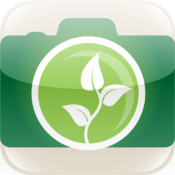 Sprout - photo history and collage creator
