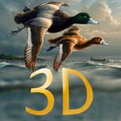 Duck Hunter Pro 3D