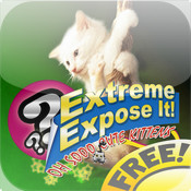 FREE! Oh so cute Kittens! : Extreme Expose It! free kittens in minnesota